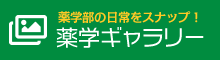 東京理科大学 薬学部の日常をスナップ!薬学ギャラリー