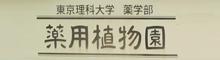 東京理科大学 薬学部 薬用植物園